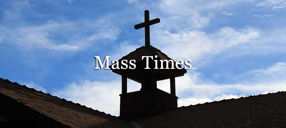 Our Lady Of The Snows Catholic Church Mass Times
